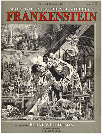 book report the story of frankenstein Frankenstein summary having finished his story, victor frankenstein dies on walton's ship enotescom will help you with any book or any question.